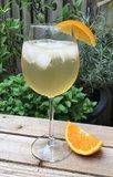 Port Tonic - Heerlijke zomerse mix